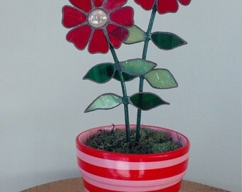 Cosmos Stained Glass Flower