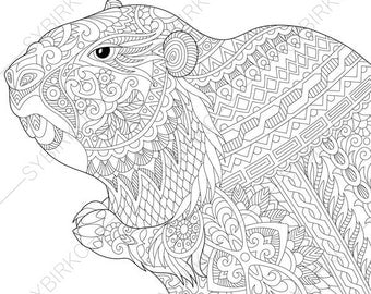 adult coloring page groundhog zentangle doodle coloring book page for adults digital illustration