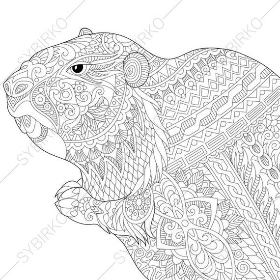 Groundhog. Coloring Page for Groundhog day greeting cards. Animal coloring book pages for Adults. Instant Download Print