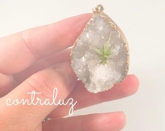 White and Gold Freeform Crystal Air Plant Necklace, ContraLuz Original Design, Living Necklace, Botanical Necklace, Planter Necklace