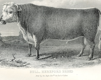 Agriculture. Original Victorian Antique print from the ninth edition of the Encyclopaedia Britannica (1875-1889)