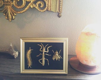 hand painted gold faux taxidermy insects