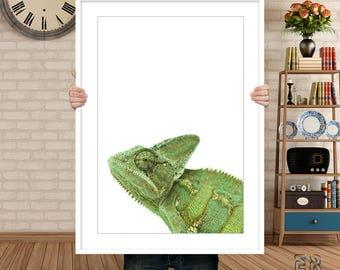 Chameleon Print, Chameleon Art,  Chameleon Printable Art, Chameleon Wall Art, Chameleon Photo, Printable Large Poster