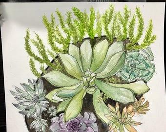 Succulent (variations) || Watercolor Original || Card or Painting