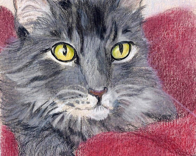 Pet Portrait Drawing, Custom, in Colored Pencil