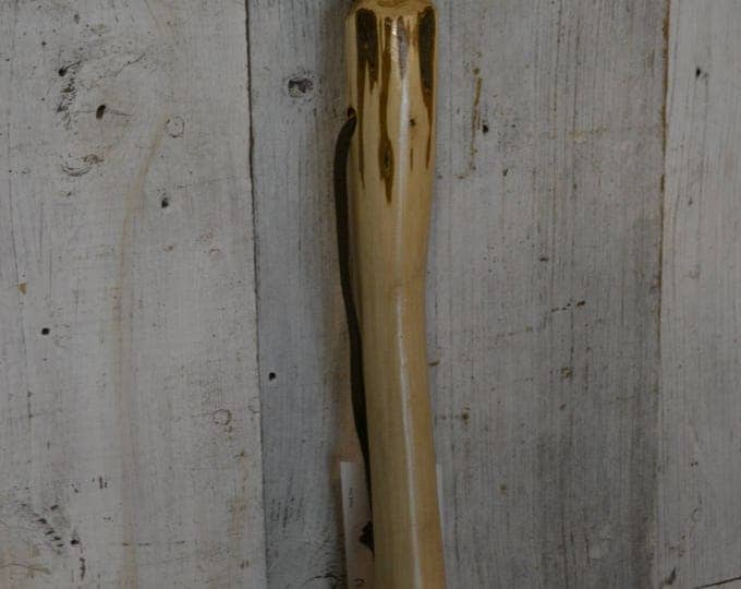 Walking Stick Owl Carving in Ironwood 1632