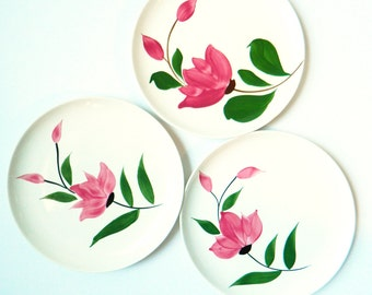 1950s Stetson China Floral Plates / Vintage Dinner Plates / Handpainted Floral Dishes / Midcentury Dinnerware