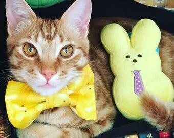 Custom Pet Bow Tie
