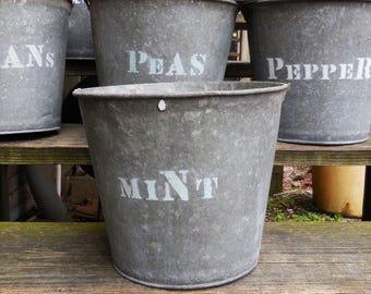 Vintage metal Bucket MINT planting  galvanized pails Rustic Barn Garden plant herb bucket Planters Storage Industrial Cottage