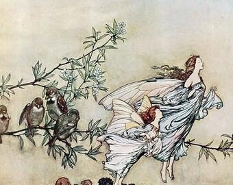 The Fairies Have Their Tiffs With the Birds,  Arthur Rackham, Vinatge Art Print