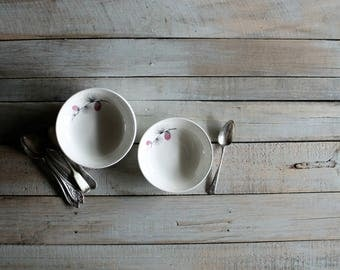 8 Vintage Dessert Bowls in Wild Clover Canonsburg Pattern