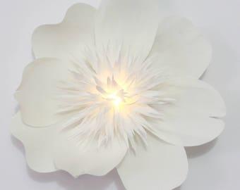 Peony Wall Flower