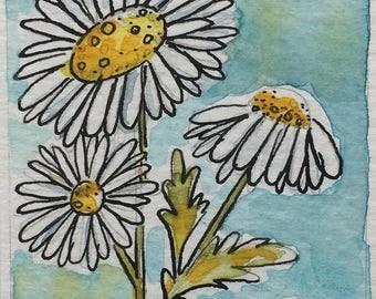 Daisies, Original Watercolour, Aceo