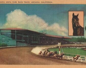 Santa Anita Handicap - Vintage 1940s Horse Racing View Postcard with Seabiscuit Inset