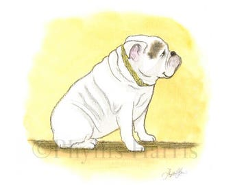 Bulldog art print - Bulldog - pet art