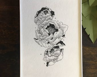 Peony Original Pen and Ink Illustration | Botanical Illustration | Floral Drawing | Vintage Inspired Etching Style