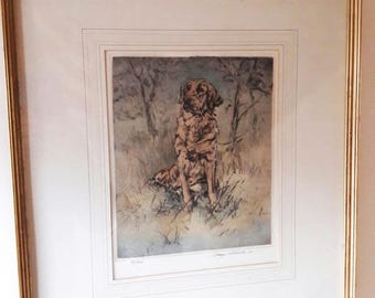 Large Vintage Framed Limited Edition Etching/Screenprint of a Golden Retriever - 95/150