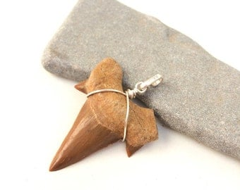 Shark tooth pendant, Shark tooth necklace, Men's necklace, Rustic, natural shark tooth pendant, sterling silver, Primitive art, Gift for him