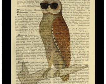 Owl Wearing Sunglasses Vintage Curiosity - Dictionary Print Book Page Art