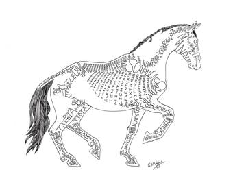 Mounted Print - White Dressage Horse in Piaffe - Word Art by Gillian Higgins