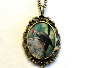 Woodpecker Necklace Woodpecker Pendant Jewelry Antique Bronze