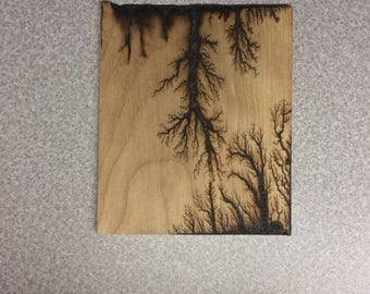 Wood Lichtenberg Figure, Fractal Burned Art, Electric Woodburning, Lichtenburg Wood Decor, Framed Art, Lichtenberg Figures,  Fractal Burns