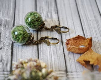 Real Moss Earrings Natural moss jewelry Green drop earrings Dangle moss earrings Sphere earrings Green moss jewelry Plant earrings Greenery