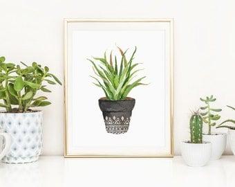 Succulent Printable Cactus Plant Succulent Plant Potted Cactus Nursery Decor Succulent Nursery Wall Art Southwest Decor House Plant Print