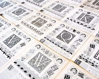 1897 Lettre au choix, E, F, H, Planche Originale Larousse, Alphabet, scrapbooking loisirs Créatifs Calligraphie,Décor vintage
