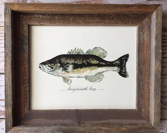 PRINT, Largemouth Bass Art Print, 8x10, 11x14