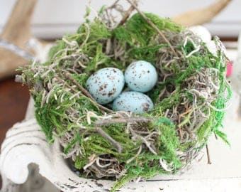 Blue Speckled Eggs - Set of 3