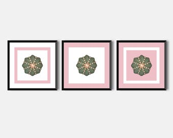 Set Of 3 Botanical Lifestyle Decor poster, Cactus Wall Art Print, Printable Poster Botanical Print Geometrical poster, instant download