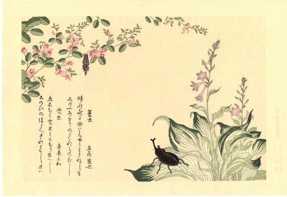"Japanese Ukiyo-e Woodblock print, Utamaro, ""Horned Scarab Beetle (Kabutomushi) and Bagworm (Minomushi)"""