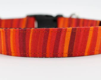 Murphy Reid Orange Stripe Dog Collar, Orange Stripe Dog Collar, Large Dog Collar, Custom Dog Collar, Small Dog Collar, Wedding Dog Collar