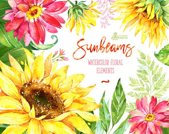 Sunbeams Elements. Watercolor floral clipart sunflowers
