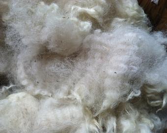 Alpaca Fleece - Carlyle whole fleece