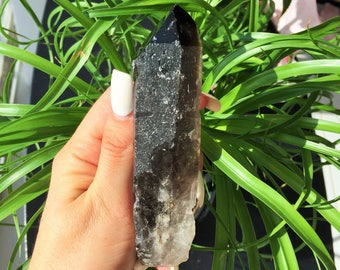 Morion / Smoky Quartz infused w/ Reiki/ Healing Crystals and Stones