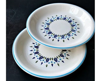 Set of Two Swiss Chalet Pie Plates.  Mid Century Atomic China by Marcrest.