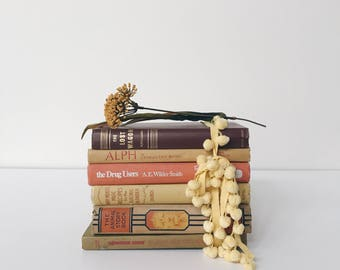 Vintage Book Set, Neutral Books, Orange and Yellow Books, Decor Display Books