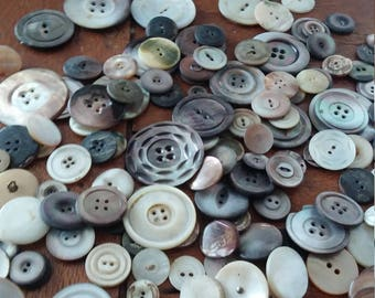 Antique Abalone and Mother of Pearl Buttons