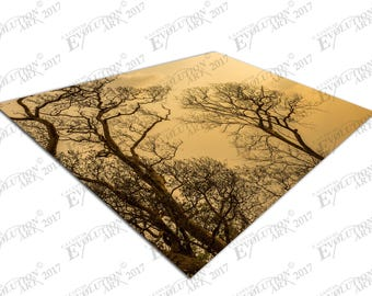 Print on Canvas autumn trees X1433