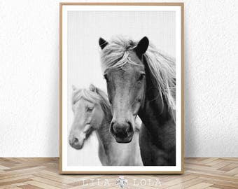 Horse Print, Large Printable Wall Art, Black and White Photography, Wall Decor, Digital Download, Horse Decor, Printable Art, Large Prints