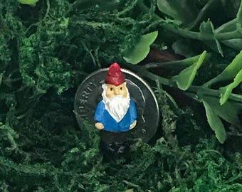 Miniature Teeny Gnome