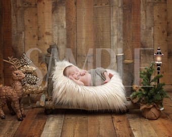 Newborn digital backdrop - Newborn digital background - Birch bed newborn winter backdrop - winter bed - christmas - Newborn digital prop