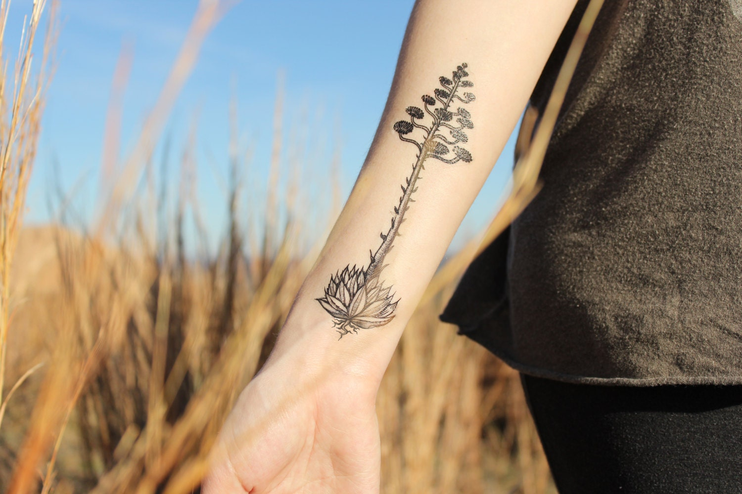 Agave Bloom Temporary Tattoo - NatureTats