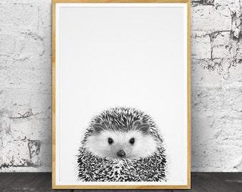 Hedgehog Print, Nursery Animals, Nursery Animal Print, Nursery Print, Animal Print, Nursery Wall Art, Nursery Decor, Nursery Printable