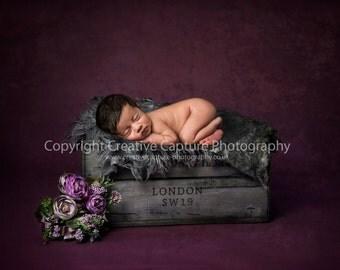 Newborn Digital backdrop / background / London Crate / girl