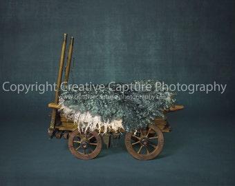 2 Newborn Digital backdrops / backgrounds / vintage cart / Girl & Boy
