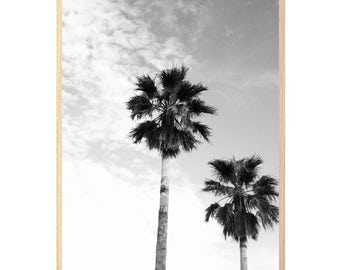 PALM TREES black and white photography wall art print