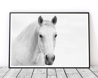 White Horse Photography, Horse Wall Art, Gift for Horse Lover, Black and White Horse Print, Printable Art, Master Bedroom, Instant Download